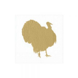 Turkey Fan Paper Cocktail Napkins – Caspari